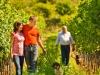 Familie Holzamann im Weingarten Mitterberg